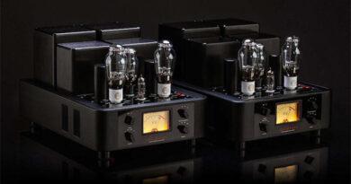 Trafomatic Audio Reference Glenn 300B PSE