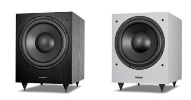 Dynavoice Challenger CSB-V15 and Magic MW-12 subwoofers