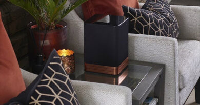 Wireless speaker Electrocompaniet Tana SL2
