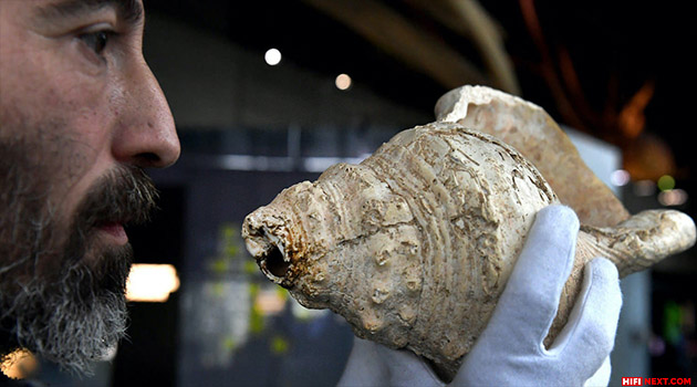 An 18000-year-old musical instrument played again