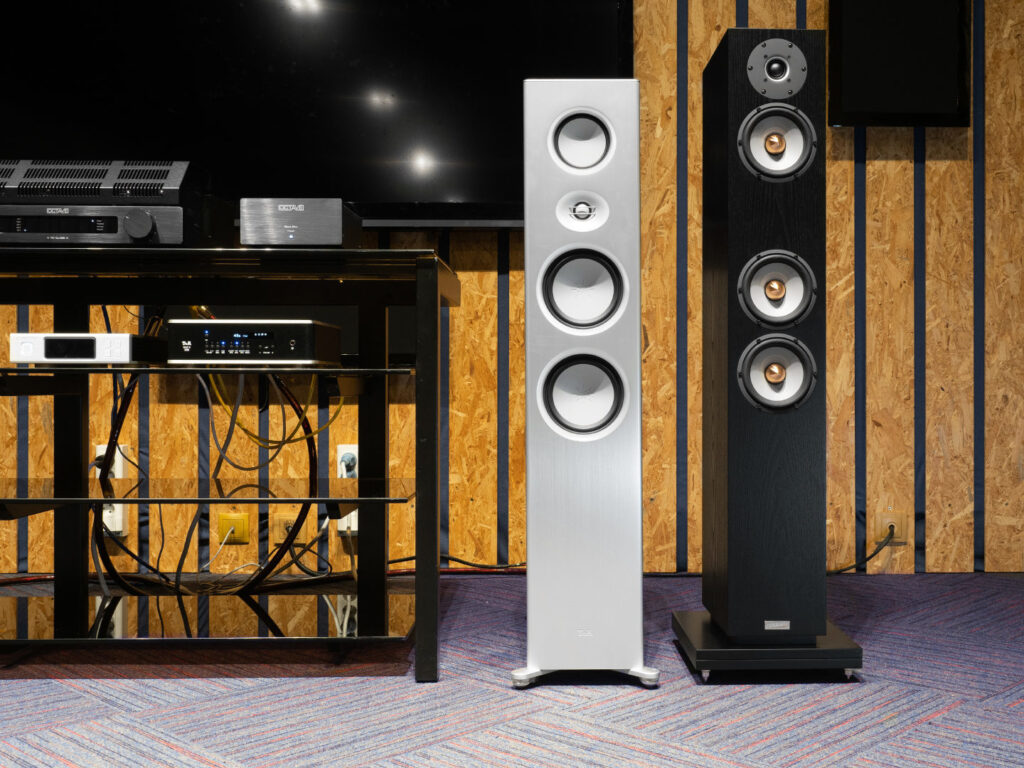 Acoustics Penaudio Serenade Signature (as the main one) and T+A Talis S 300. Both are very difficult loads, especially for a tube amplifier